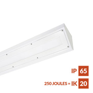 Obex Ligature free, vandal resistant cornice LED luminaire for use in police custody suite cell