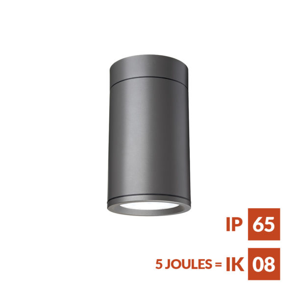 Terminus Surface S12 Cylindrical sealed weather and vandal resistant downlighter