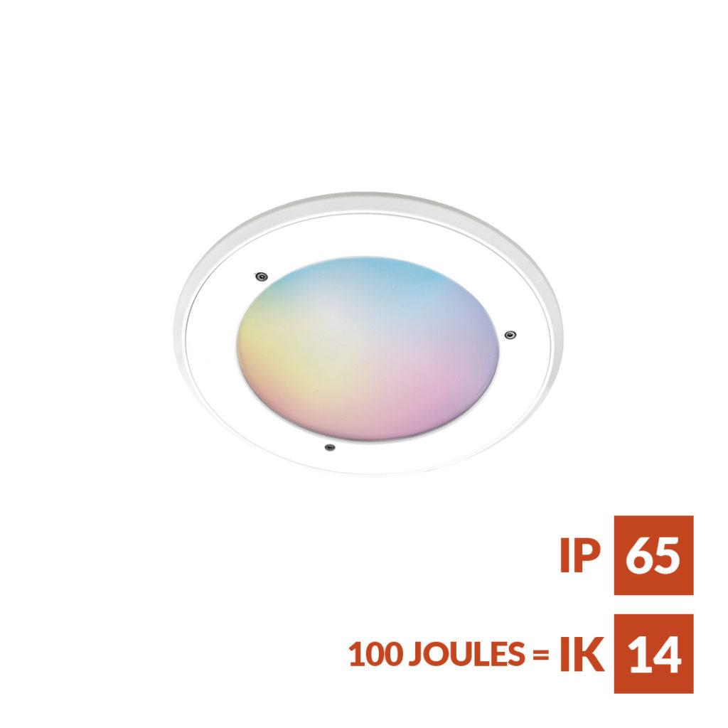 RGBW LED anti-ligature Downlight